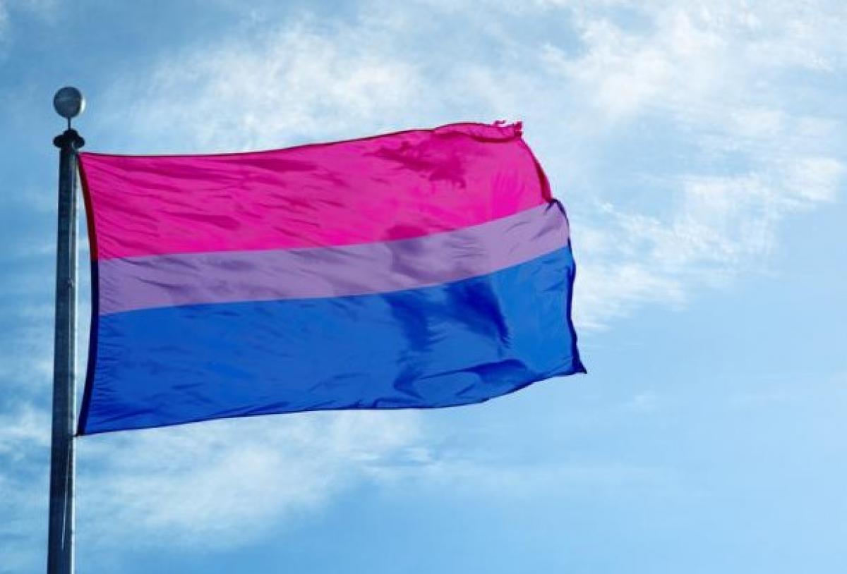 Dia internacional bisexualidad